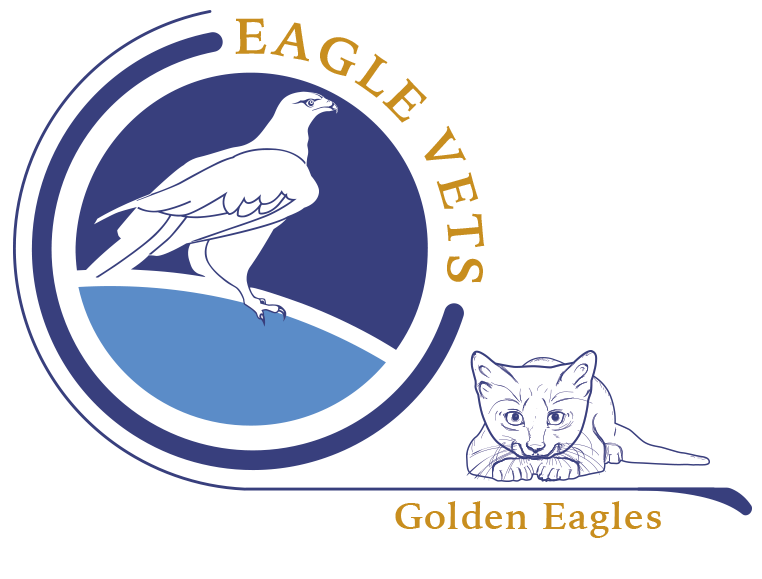 """golden eagle mature personals Golden eagle chicks have been successfully released in southern scotland in the  first of a """"groundbreaking"""" series of relocations."""